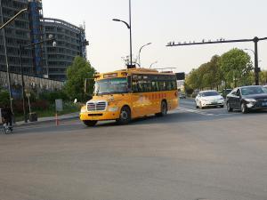黄色长鼻校车