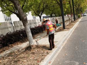 在路边绿化带上的施工人员