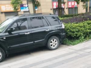 乱停车:停在步行道的车