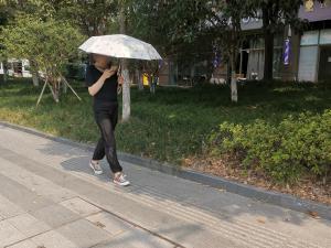 夏日路人一手撑伞一手玩手机